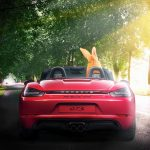 easter bunny in a boxster 718 (002)